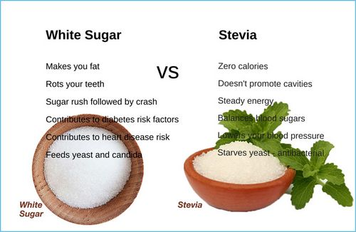 Sugar Alcohol Vs Sugar Substitute